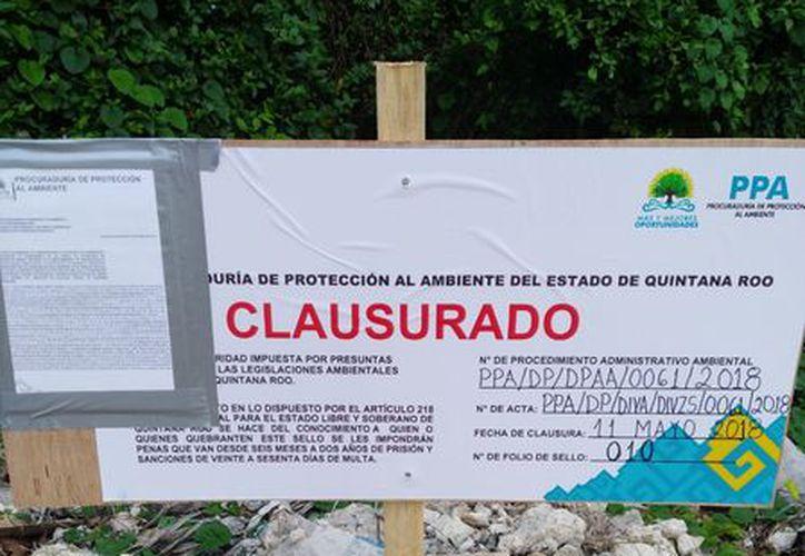 Autoridades ambientales colocaron sello de clausura. (Javier Ortiz/SIPSE)