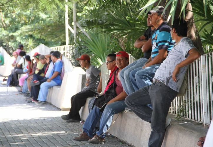 """La falta de experiencia es uno de los obstáculos al momento de buscar un empleo. En Cancún, la zona de """"El Crucero"""" es en donde se concentran los desempleados. (Tomás Álvarez/SIPSE)"""