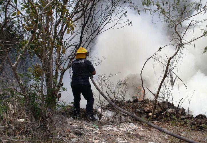 Se espera que en dos semanas, con las lluvias, se apague por completo el fuego de los incendios urbanos de Playa del Carmen. (Octavio Martínez/SIPSE)