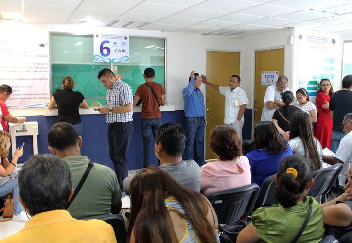 Al día, en Chetumal, acuden 100 personas para tramitar el documento y conducir de manera legal. (Joel Zamora/SIPSE)