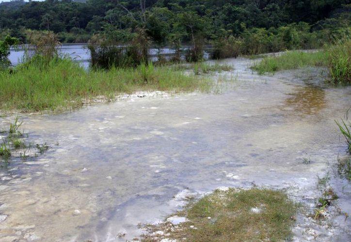 Los niveles de agua se mantienen en la comunidad de Nicolás Bravo. (Harold Alcocer/SIPSE)