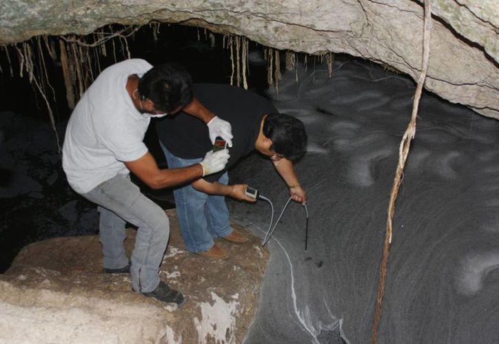Quieren conocer las condiciones en las que se encuentran los cenotes. (Alida Martínez/SIPSE)