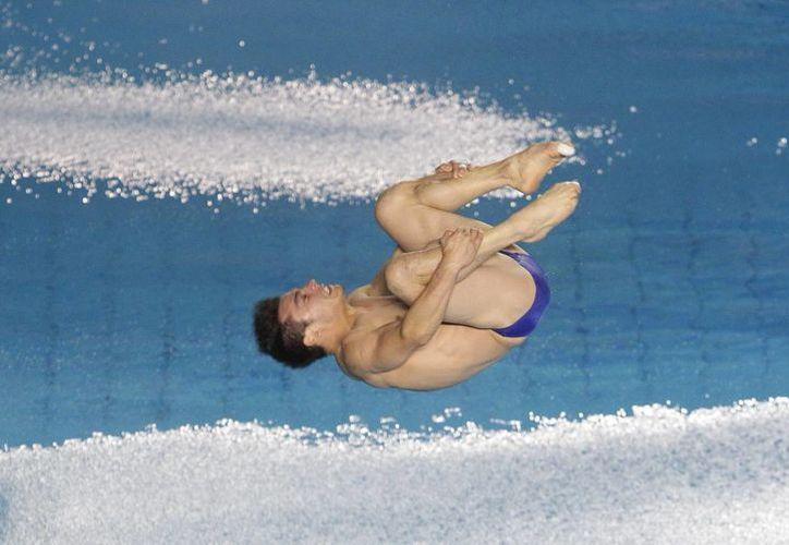 Yahel Castillo compite en el salto trampolín de 3 metros , durante la segunda ronda de la quinta serie final de clavados de la FINA. (EFE)