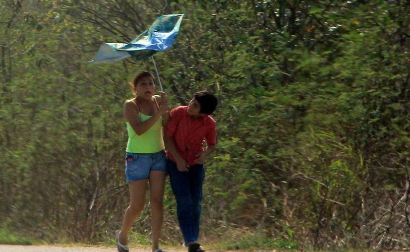 El frente frío ocasionó algunas rachas fuertes de viento en Mérida. (José Acosta/SIPSE)