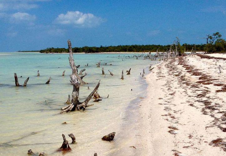 Suspendieron los permisos de construcción del proyecto en la isla. (Redacción/SIPSE)