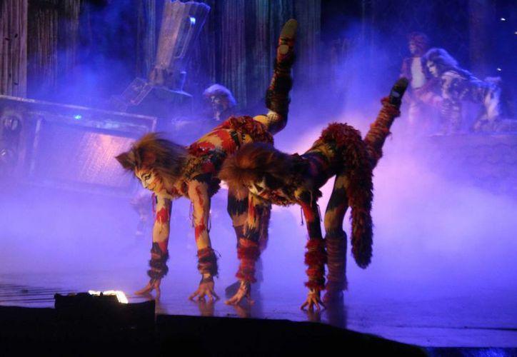 La obra Cats no se presentaba en la Ciudad de México desde 1991. (Notimex)