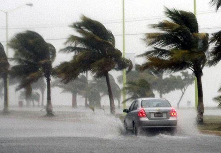 Aunque el huracán Marty perdería intensidad durante este martes, se esperan lluvias y vientos fuertes se presenten en la mayoría del país debido a la cercanía del fenómeno, por lo que Conagua mantiene la alerta amarilla en la mayoría de la costa occidente del país. (Archivo/Notimex)