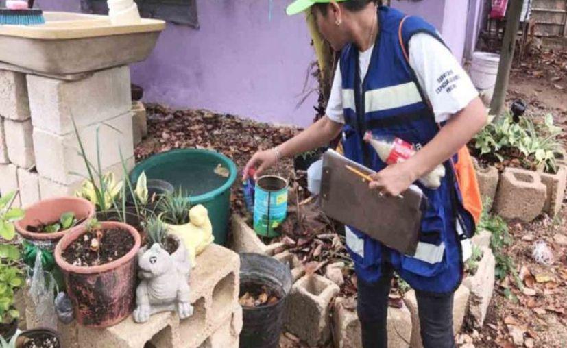 Antes de dar acceso a las viviendas al personal de abatización, hay que identificarlos por su gafete y chaleco en color azul o caqui. (Novedades Yucatán)