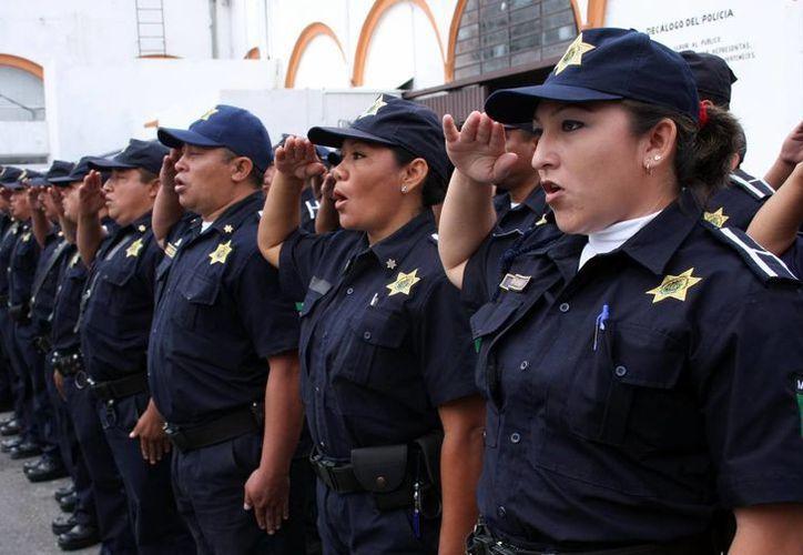 La Policía Federal trabaja en forma conjunta con las corporaciones del estado y la ciudad. En la imagen, elementos de la Policía Municipal de Mérida. (SIPSE)