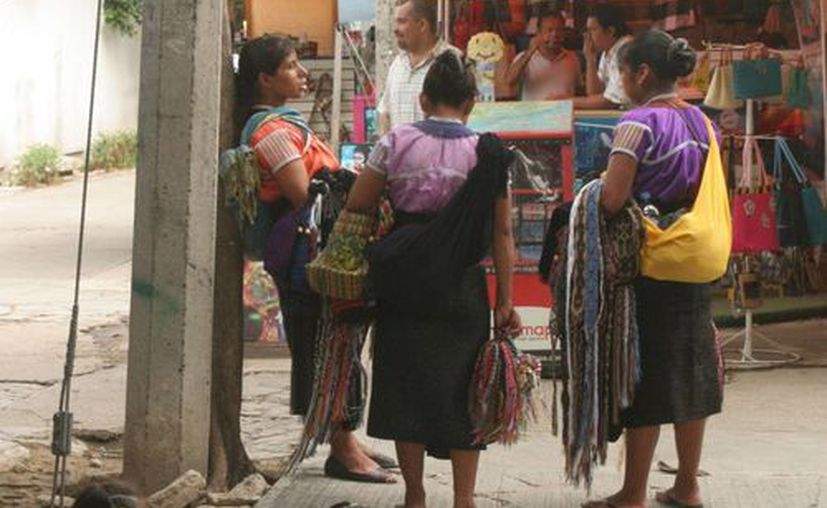 Trabajarán en las colonias en situación de pobreza y concentración indígena. (Israel Leal/SIPSE)