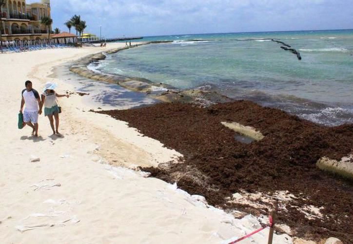 Muchos visitantes mostraron su desagrado de nadar en el mar en esas condiciones y el mal olor. (Redacción)