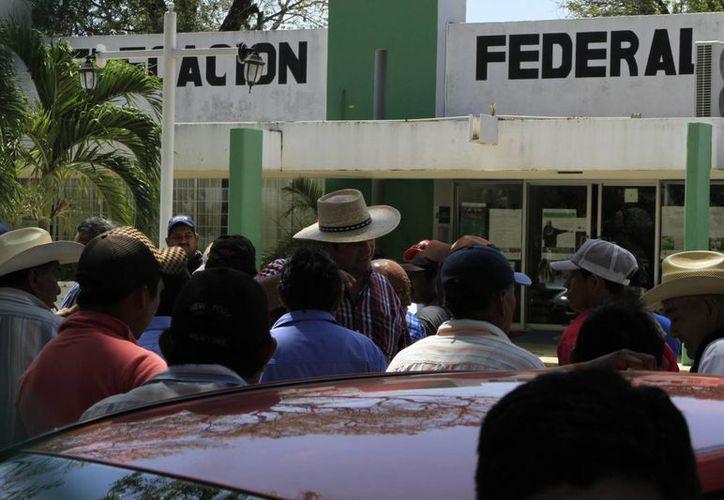 La Sagarpa en Quintana Roo, tuvo que prescindir de los servicios de 16 empleados. (Ángel Castilla/SIPSE)