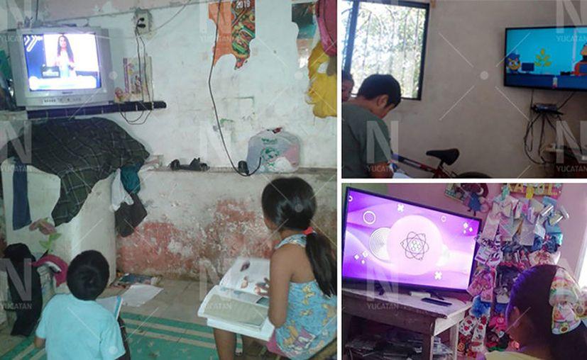 En muchas casas  de Motul se pudo observar a los pequeños atentos a las clases virtuales. (Novedades Yucatán)