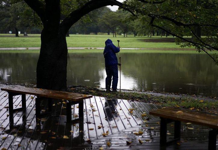 Un hombre coloca una valla alrededor de un estanque en el parque Yoyogi en Tokio, Japón. El estanque va a ser vaciado para evitar la proliferación de mosquitos en la zona, debido al brote de dengue que hay en el país. (EFE)