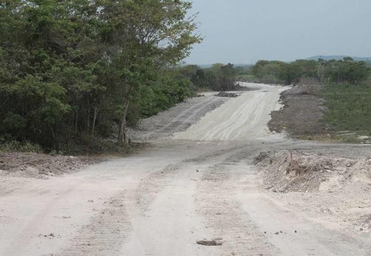 Las hectáreas fueron afectadas por la ampliación de la carretera Cancún-Chetumal. (Edgardo Rodríguez/SIPSE)