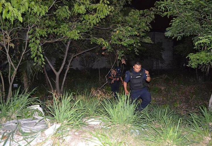 Los asaltantes se escondieron en un terreno baldío para luego escapar hacia rumbo desconocido. (Redacción/SIPSE)