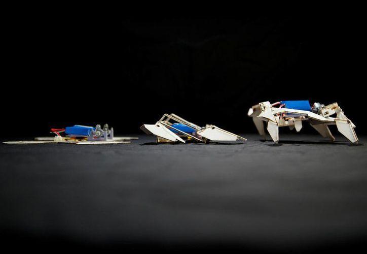 Los robots son tan pequeños y ligeros podría explorar el espacio exterior y otros ambientes peligrosos. (AP)