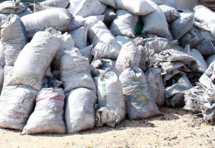 Imagen del cargamento de carbón vegetal decomisado por la Profepa en Mérida. (Milenio Novedades)