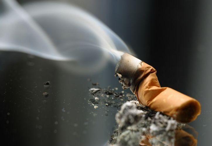 En Australia desde el 2010 se prohíbe logos y empaques de cigarrillos de colores distintivos y exige paquetes de color verde olivo. (Foto: El Economista)