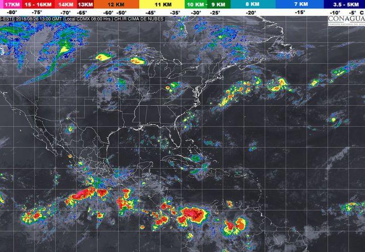 Durante el día de hoy se espera un cielo parcialmente nublado con probabilidad de tormentas en Playa del Carmen. (Conagua)