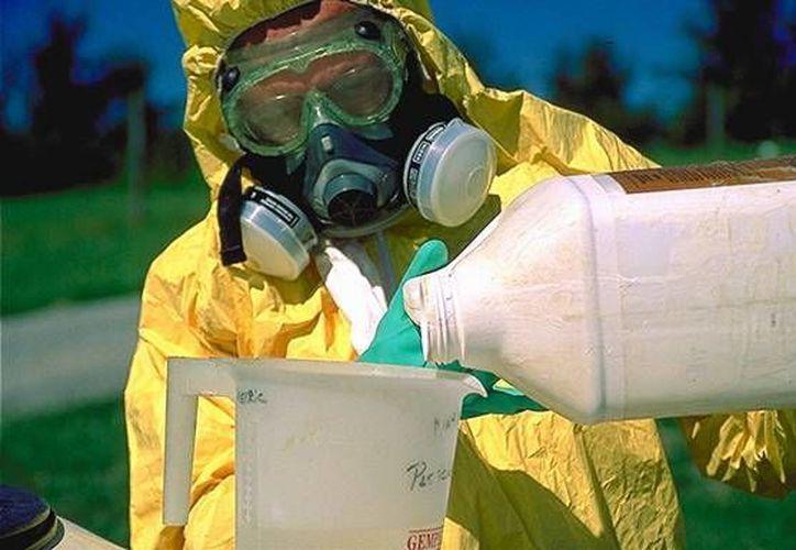 La reutilización de envases de agroquímicos puede derivar cáncer y malformaciones congénitas. (entomology.umd.edu)