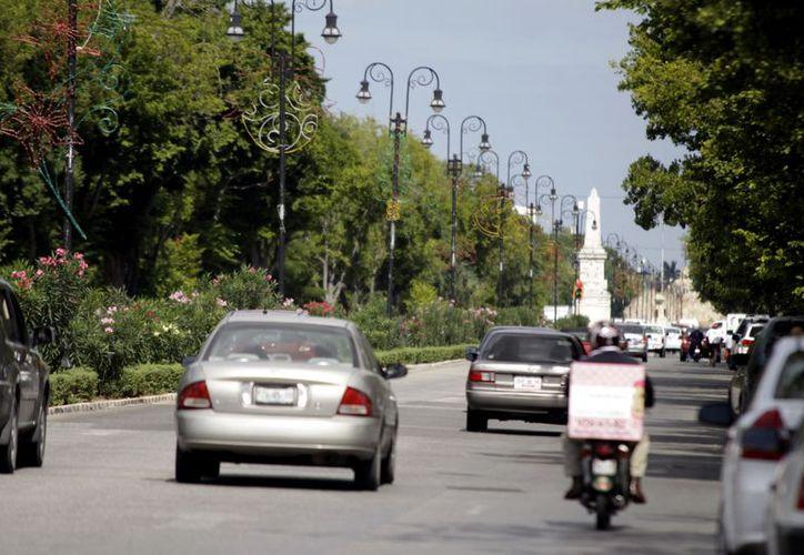 La agrupación eligió a Mérida como sede para el sureste del país. (Christian Ayala/SIPSE)