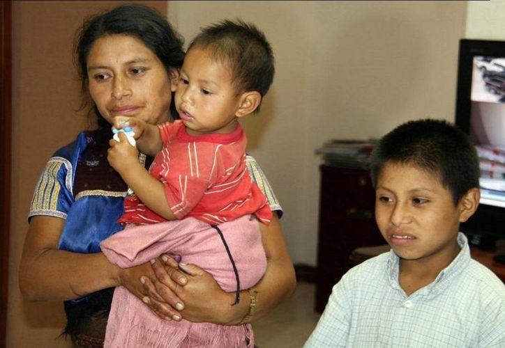 Feliciano es un niño de la etnia Tzotzil originario del Paraje Romerillo del municipio de San Juan Chamula, Chiapas. (pgje.chiapas.gob.mx)