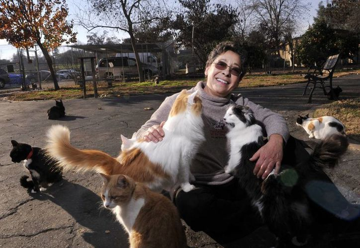 Lynea Lattanzio, fundadora de The Kings, juega con algunos de sus gatos en Reedley, California. (Agencias)