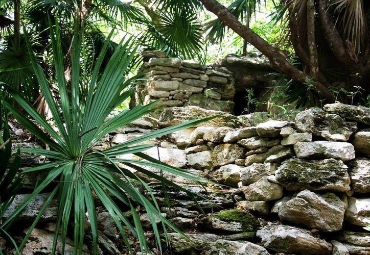 La comunidad maya pide más promoción a los vestigios arqueológicos que hay en Playa del Carmen. (Octavio Martínez/SIPSE)