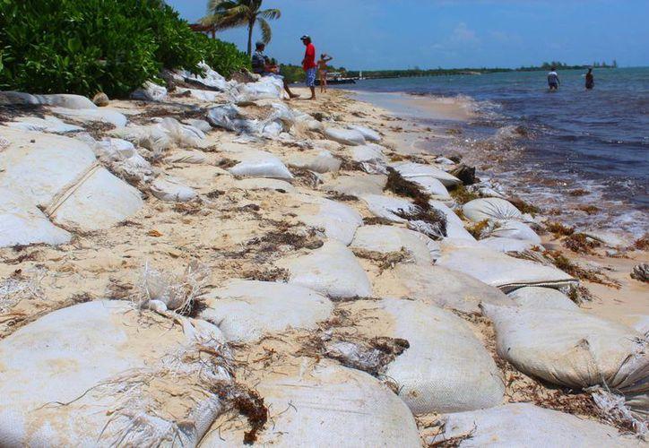 En la parte Norte de la Riviera Maya se vislumbra la pérdida de arena a causa de la erosión. (Octavio Martínez/SIPSE)