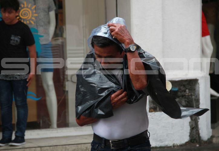 Este miércoles la lluvia puso en aprietos a los meridanos, quienes buscaban cubrirse aunque sea un poco con los famosos 'nylons'.  (Jorge Acosta/SIPSE)