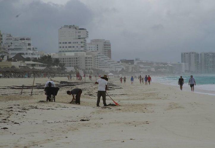 A partir de este lunes la población podrá participar en las limpiezas de playas programadas. (Tomás Álvarez/SIPSE)