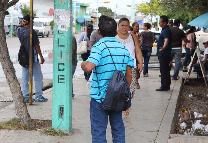 Son ex trabajadores del gobierno del estado y de ayuntamientos (Joel Zamora/SIPSE)