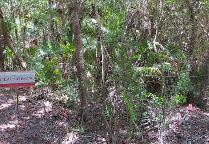 Clausuran una propiedad en la Reserva de la Biósfera Sian Ka'an en Tulum. (Archivo/SIPSE).