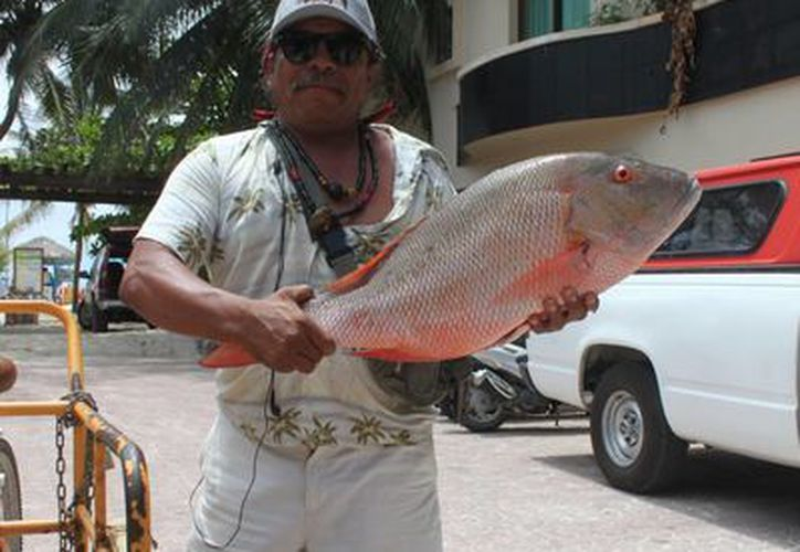 El pescador William Armando Hernández es conocido en la ciudad pesquera. (Carlos Calzado/SIPSE)