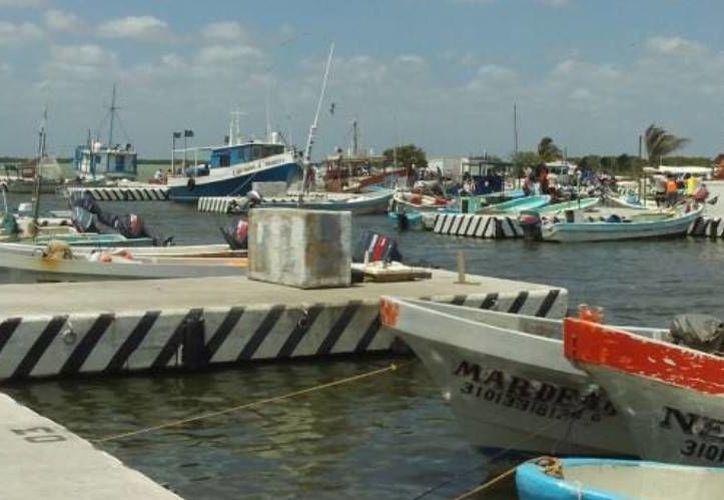 El cierre de puertos afecta las actividades pesqueras en los puertos de Yucatán. (Óscar Pérez/SIPSE)