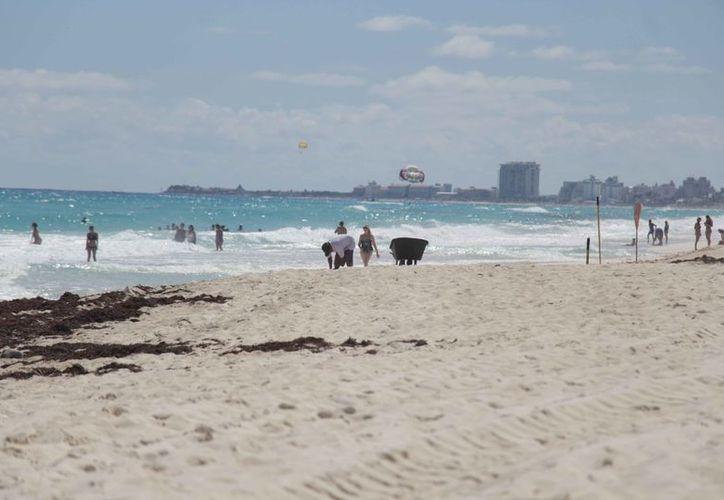Buscan los recursos para el mantenimiento de las playas del estado. (Paola Chiomante/SIPSE)