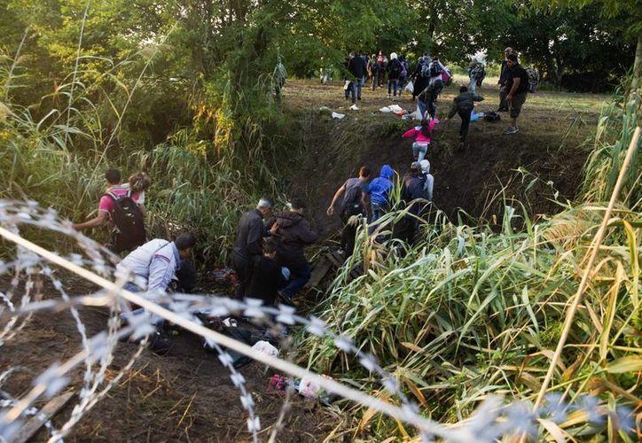 Varios inmigrantes pasan la alambrada en la frontera entre Hungría y Serbia cerca de Roszke. (EFE)