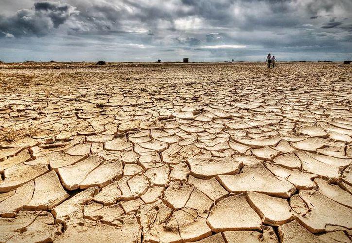"""El """"cambio climático"""" se encuentra en la categoría de """"palabras a evitar"""", para ser sustituida por """"condiciones climáticas extremas"""". (Ecoosfera)"""