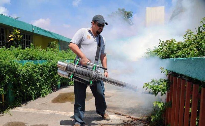 La nebulización se lleva a cabo en las casas de Quintana Roo. (Redacción/SIPSE)