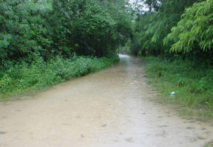 Los niveles de agua han rebasado apenas el nivel de las vías terrestres en la zona rural. (Manuel Salazar/SIPSE)