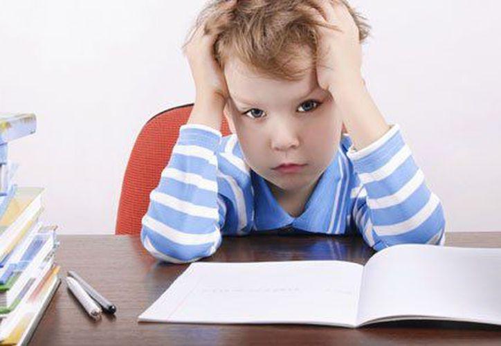 Además, te traemos cinco formas de entrenar a tu cerebro para el éxito. (Guía Infantil)