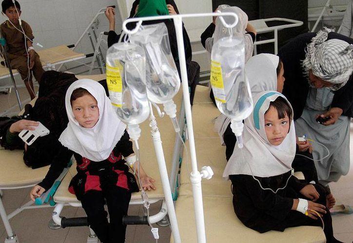 Las autoridades de Afganistán lanzaron una alerta luego de conocerse varios casos de envenenamientos 'masivos' de alumnas en diferentes escuelas. (excelsior.com.mx)