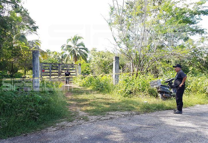 Este es el rancho en donde ingresó el toro. (Federico Cab/ SIPSE)