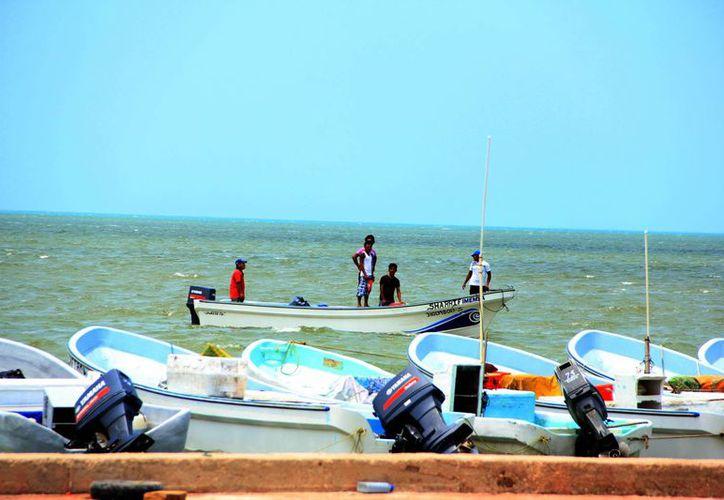 Pescadores esperarán varios días antes de que se decrete la apertura de los puertos. (SIPSE)