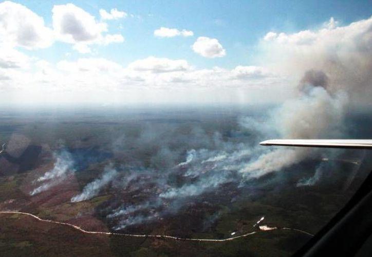 Los incendios son un tema que afecta a varios países y de los que también se hablará durante la reunión de la ONU. (Contexto/Internet)