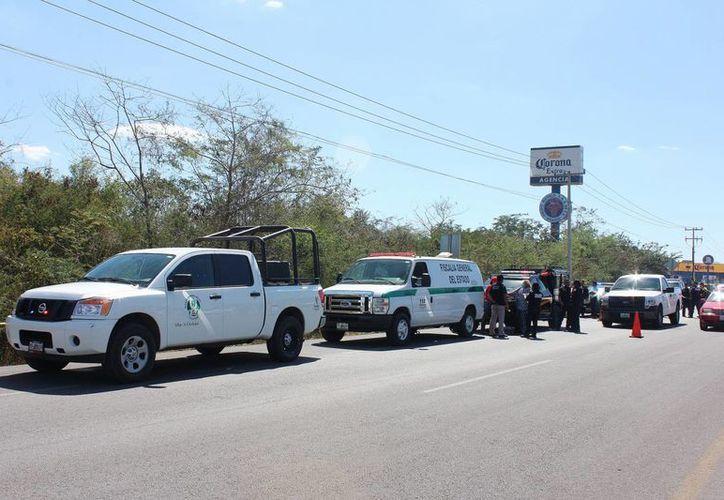 En montes cercanos a la colonia San Camilo y al fraccionamiento Los Héroes fue hallado el cadáver de un hombre que no ha podido ser identificado. No hay detenidos. (Fotos: Aldo Pallota/Milenio Novedades)