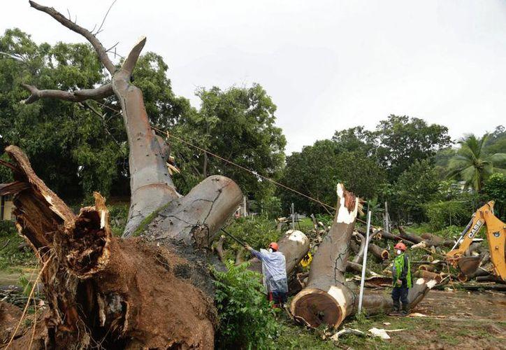 El meteoro dejó fuertes lluvias en Panamá, las cuales provocaron algunos daños en el país. (AP/Arnulfo Franco)