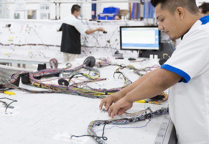 La tecnología favorece la competitividad de las empresas locales.  (Milenio Novedades)