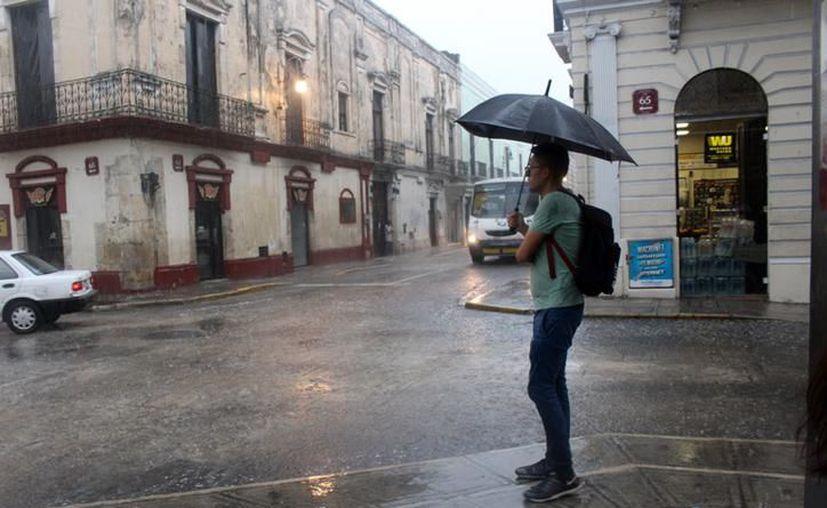 Hay probabilidad de chubascos fuertes en el noroeste, centro y noreste de Yucatán. (Novedades Yucatán)